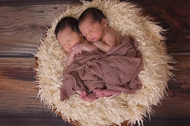 bebes jumeaux